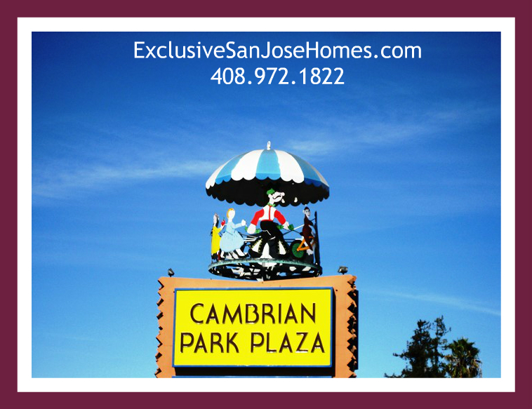 Carousel at Cambrian Park Plaza